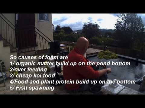 Devon Koi Pond Foam On Your Water