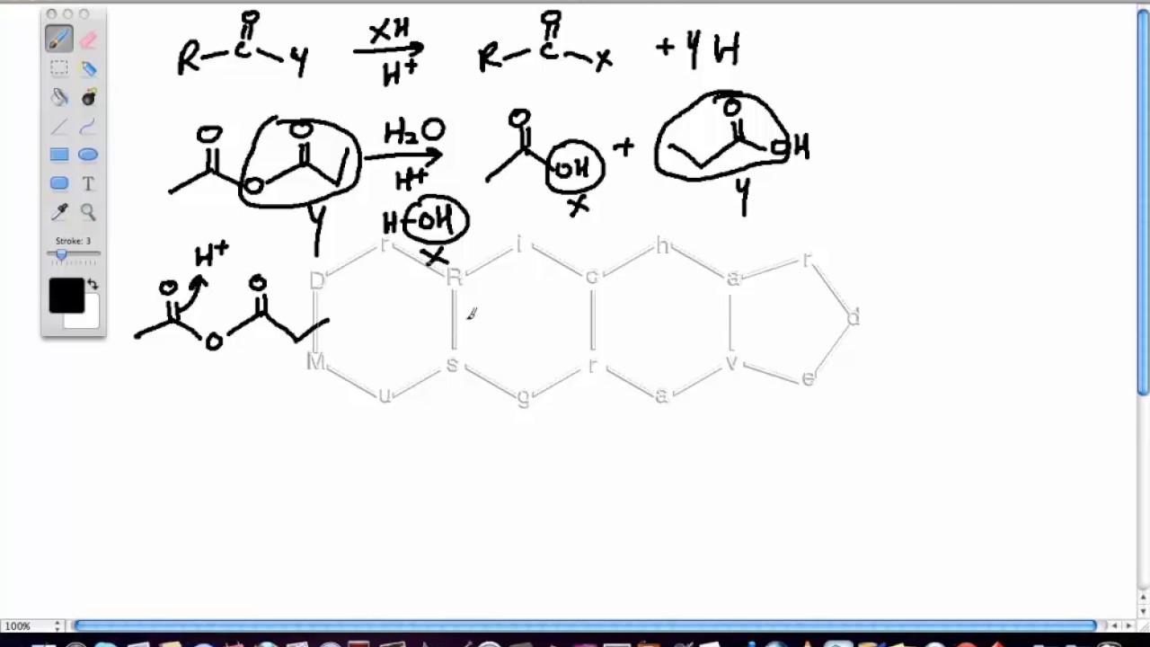 Acid Catalyzed Hydrolysis of Acid Anhydrides