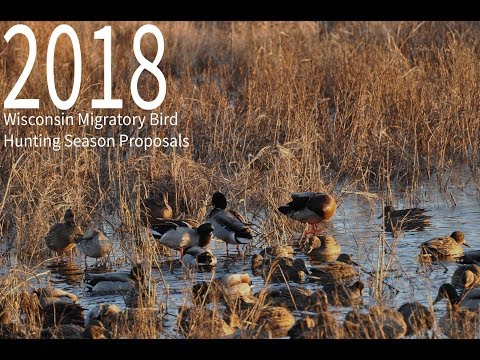 2018 Migratory Bird Hunting Season Proposals