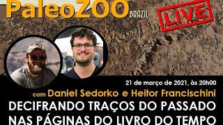 PALEOZOOBR LIVE: DECIFRANDO TRAÇOS DO PASSADO NAS PÁGINAS DO LIVRO DO TEMPO
