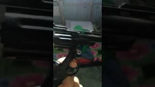 Desi Gun