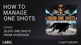 How to Organize Manage One Shot Samples | EDM Future Bass House Hip Hop One Shot Samples
