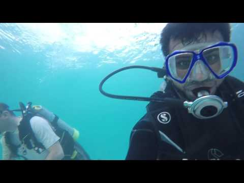 Abu Dhabi Scuba Diving Break Water Under water Cruise 6