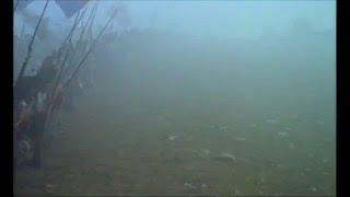 Video French Revolution ~Battle of Valmy 1792 download MP3, 3GP, MP4, WEBM, AVI, FLV Oktober 2018