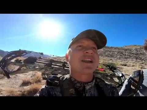 EXPLORING NEW ZONES IN D-16! (Deer Hunting In San Diego County)
