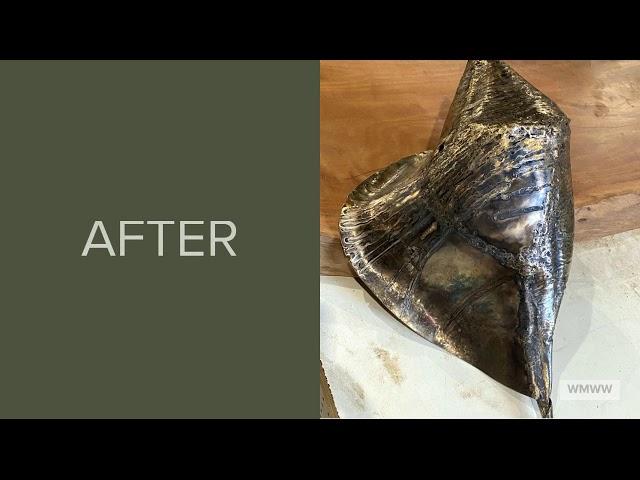BEFORE & AFTER SERIES: Volume II