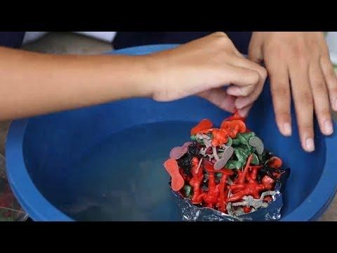 เล็กๆเปลี่ยนโลก [by Mahidol] ค่ายสนุกคิด คิดวิทย์-คณิต (3/3)