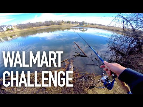 $50 Walmart Bass Fishing Challenge — ft.  Andrew Flair, APbassin
