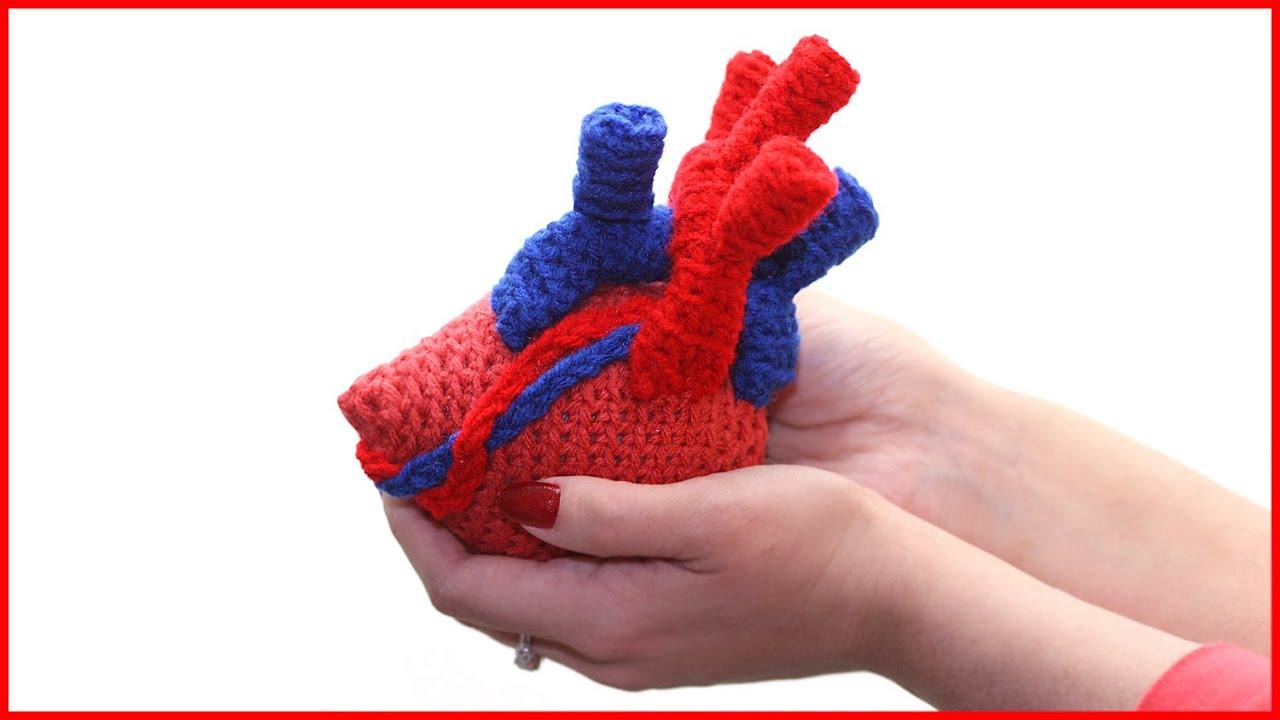 How To Crochet An Anatomical Heart Amigurumi Youtube