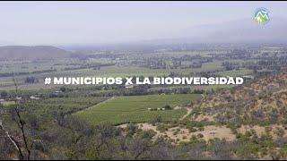 #MunicipiosXLaBiodiversidad El Monte