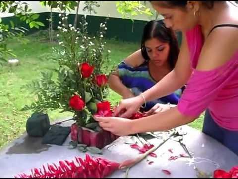 presentaci n de productos a base de plantas ornamentales