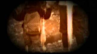 STEALTH [-Alstromeria-] Mp3