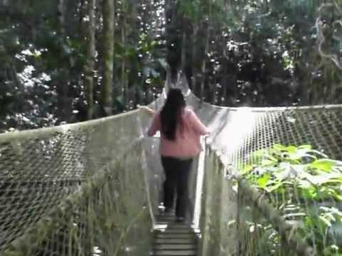 Tour Guide in Brazil, Bahia, RAIN FOREST