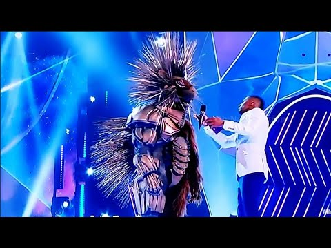 The Masked Singer: Tyrese Gibson is unmasked as the Robopine
