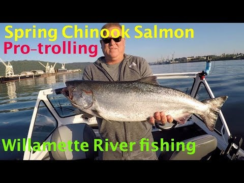 Spring Chinook Salmon Fishing Using Pro-Troll Flashers And Spinners.