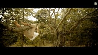 Climbing The Banyan Tree - the valley school - INDIA -