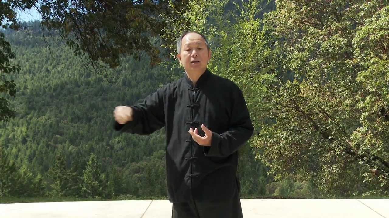 Yang Tai Chi For Beginners 11 Minute Clip Ymaa Dr Jwing Watch Diagram Http Wwwamazoncom Canopy2yearwatchprotection Ming Youtube
