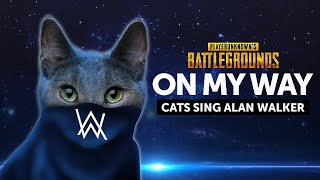 Cats Sing On My Way by Alan Walker | Cats Singing Song