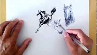 Картинки лошади - drawing horse