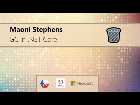 .NET Meetup with Maoni Stephens [ENG]
