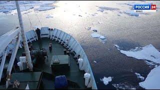 Ученые исследуют самочувствие Арктики: к каким выводам пришли специалисты