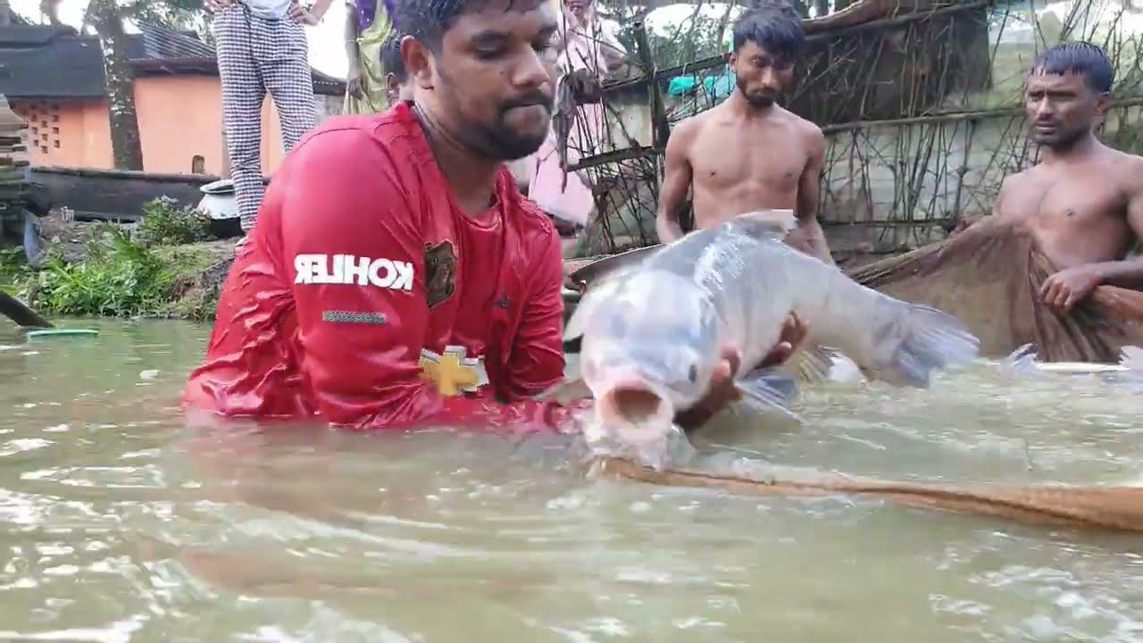 Net Fishing | Tons of Big Fish Catch | Gill Net Fishing