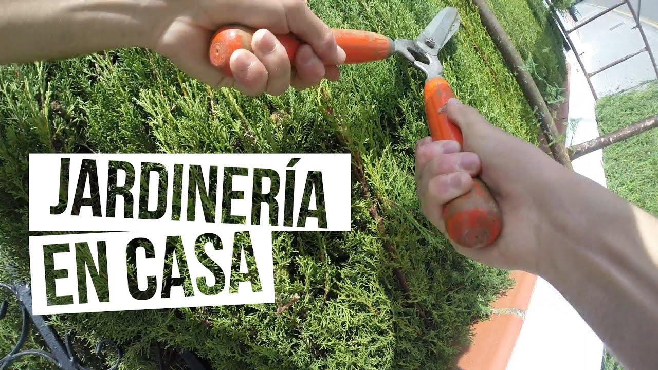 Jardiner a en casa gopro hero3 black edition youtube - Jardineria en casa ...
