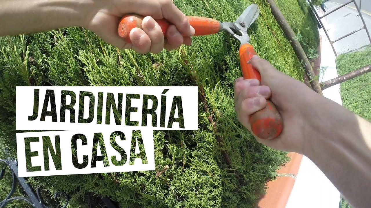jardiner a en casa gopro hero3 black edition youtube