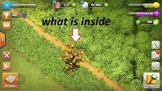 Removing fortune tree in clash of clans... Get unlimited coins and gems......