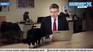 Kaķis palīdz atbildēt uz jautājumiem. Кот помогает отвечать на вопросы. 02.04.2017. LV/RU