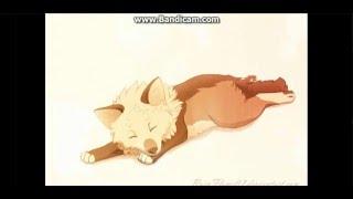 Anime Wolves ~ Home