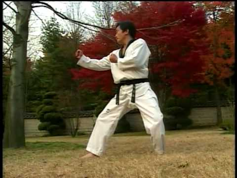 Kukkiwon Text Book 1-g Chagi-Kicking 1995