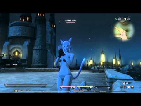 FF XIV Miqote bathing suit - YouTube