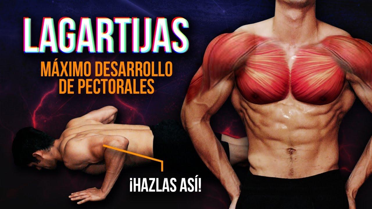 Download LAGARTIJAS: CÓMO HACERLAS PARA CONSTRUIR MÚSCULO