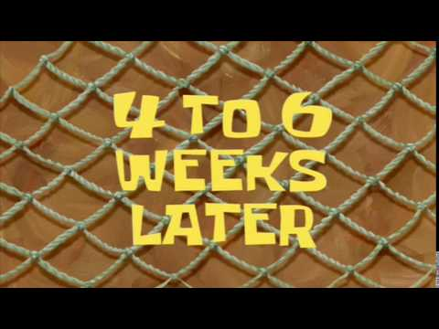 4 to 6 Weeks Later | SpongeBob Time Card #39
