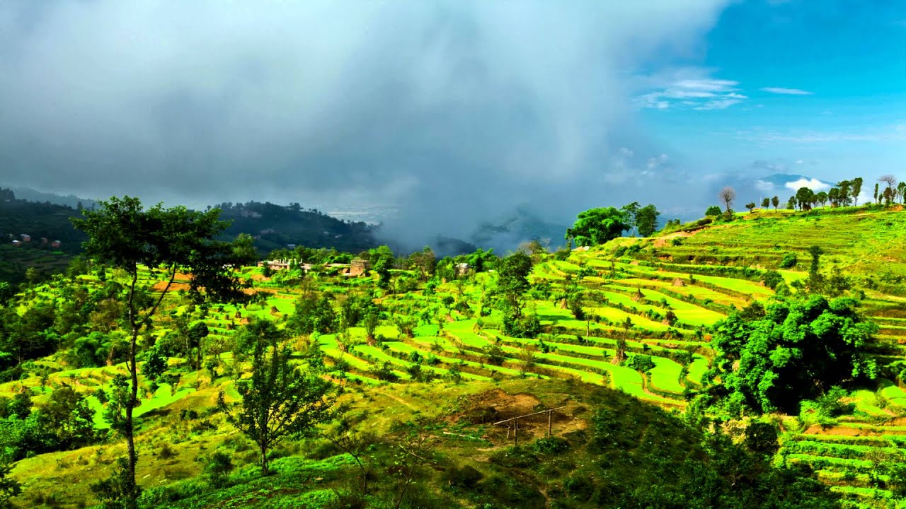Time lapse of a terraced cultivated hillside in nepal - How to terrace a hillside ...