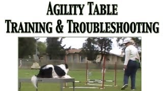 Agility Table Training And Trouble Shooting - Clicker Training
