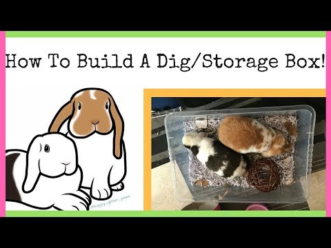 HOW TO BUILD A DIG/FORAGE BOX! // ollieandermie