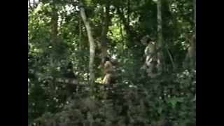 PRIMITIV - Sam Gardner - 1978 ( Film Completo ) by Slania