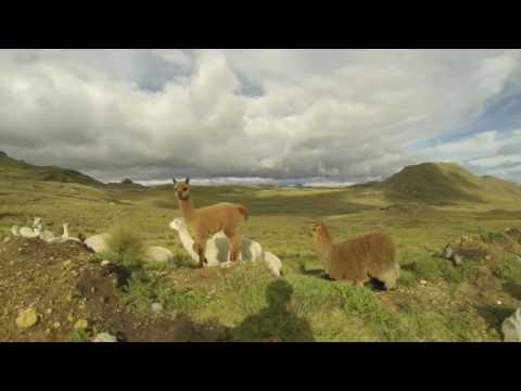 Trujillo, Peru - Traveling in South America