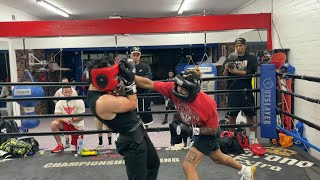 DDG vs. Pro Undefeated Boxer (Sparring)