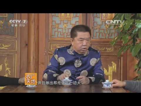 20160713 农广天地  谈天说地话小吃——北京小吃(一)