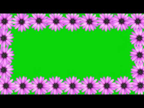 Wedding Background Video Effects HD-Animation Pink Flower Frame thumbnail