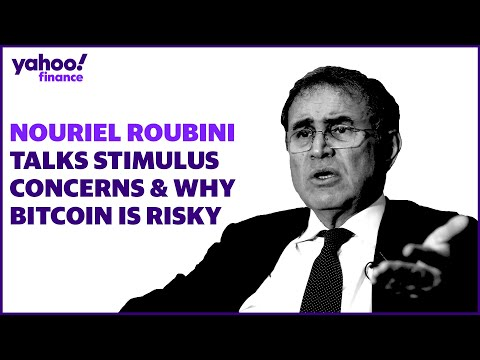 Nouriel Roubini Discusses Bitcoin Risk, Stimulus Concerns, And The Rise In SPACs