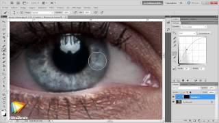 Adobe Photoshop CS5 : Exercice pratique avec la courbe