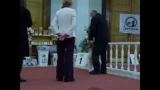 Выставка собак Рыбинск 2.12.12 американские бульдоги