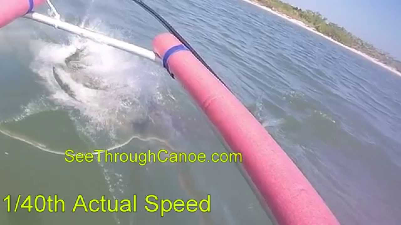 Transparent Canoe Kayak Bull Shark Attack Seen From A Clear Kayak Youtube