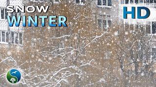 Зима, идет снег, падают снежинки. Красивое видео. Зимний пейзаж. Вид из окна. Природа,