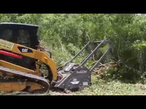 Clearing wooded land