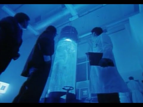"""Download """"The WICKED CITY"""" - 1992 Live-Action Full Movie!"""